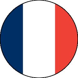 Französisch Ubersetzer