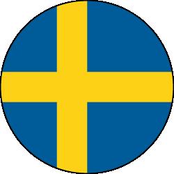 Schwedisch Übersetzer